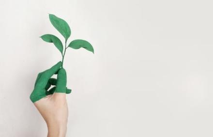 Tænk på miljøet og flet bæredygtighed ind i din hverdag
